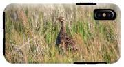 Pheasant Hen IPhone X Tough Case