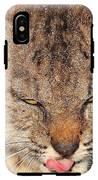 Portrait Of A Young Bob Cat 02 IPhone X Tough Case