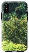 Rainforest Near Hana IPhone X / XS Tough Case