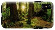 Rainforest Path IPhone X Tough Case