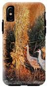 Sandhill Cranes At Sunrise IPhone X Tough Case