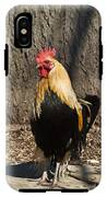 Showy Rooster Posed IPhone X Tough Case