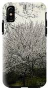 Snow White Flowering Tree IPhone X Tough Case
