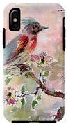 Spring Bird Fantasy Watercolor  IPhone X Tough Case