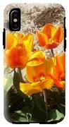 Springtime Flowers IPhone X Tough Case