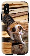 Stepping Down - Calico Cat On Beech Woodpile IPhone X Tough Case