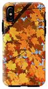 Sunlight In Maple Tree IPhone X Tough Case
