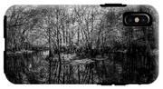 Swamp Island IPhone X Tough Case