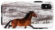 Wild Horse IPhone X Tough Case