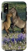 Wild Mustangs Playing 2 IPhone X Tough Case