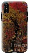 Woods In Oak Creek Canyon, Arizona IPhone X Tough Case