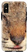 Young Bobcat Portrait 01 IPhone X Tough Case