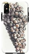 A Bunch Of Grapes By Johan Teyler  1648-1709  IPhone X Tough Case