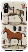 A Chromolithograph Of Horses With Antique Horseback Riding Equipments   1890  IPhone X Tough Case
