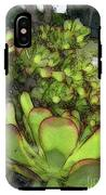 Aloe Succulent IPhone X Tough Case