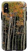 Autumn As The Seasons Change IPhone X Tough Case