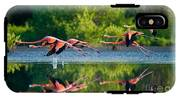 Caribbean Flamingos Flying Over Water IPhone X Tough Case