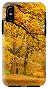 Collection Of Beautiful Colorful Autumn IPhone X Tough Case