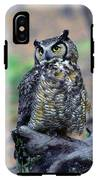 Great Horned Owl B. Virginianus IPhone X Tough Case