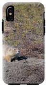 Prairie Dog 1 IPhone X Tough Case