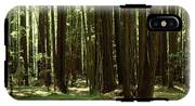 Redwood Trees Armstrong Redwoods St IPhone X Tough Case