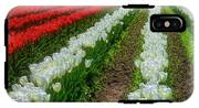 Rows Of White And Red Tulips IPhone X Tough Case