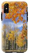 Touch Of Fall IPhone X Tough Case
