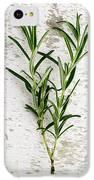 Fresh Rosemary IPhone 5c Case by Nailia Schwarz