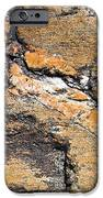 History of Earth 4 iPhone Case by Heiko Koehrer-Wagner
