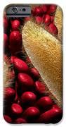 Conceptual Image Of Paramecium IPhone Case by Stocktrek Images