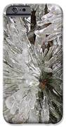 Ice On Pine Branches IPhone 6s Case