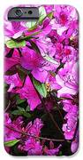 Manik IPhone 6s Case by Machiko Studio