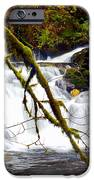 Beaver Cr. Falls  IPhone 6s Case by Scott Gould