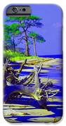 North Florida Beach IPhone 6s Case by Annette Allman