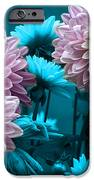 Spring Flowers IPhone 6s Case by Joe McCormack Jr
