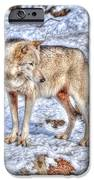 A Wolf In Winter IPhone 6s Case by Skye Ryan-Evans