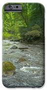 Abram's Creek Gsmnp IPhone 6s Case