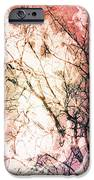 Abstract Branches IPhone 6s Case by Jennifer Kimberly