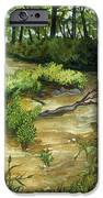 Allequash Creek On Trout Lake IPhone 6s Case by Helen Klebesadel