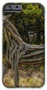 Alys Beach Driftwood Horse IPhone 6s Case