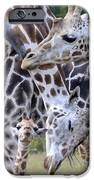 And Baby Makes Three IPhone 6s Case by Lori Tambakis