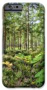 Ashley Heath Forest IPhone 6s Case