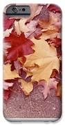 Autumn And Eighty Fourth IPhone 6s Case