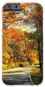 Autumn Splendor IPhone 6s Case by Candice Trimble