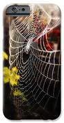 Autumn Web IPhone 6s Case