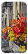 Autumn Window Box IPhone 6s Case by Gordon  Grimwade