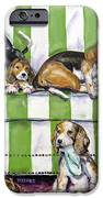 Beagle Mania IPhone 6s Case by Chris Dreher