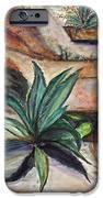 Big Aloe Maguey IPhone 6s Case