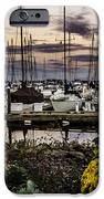 Blaine Harbor IPhone 6s Case by Blanca Braun