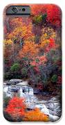 Blue Ridge Parkway Waterfall In Autumn IPhone 6s Case